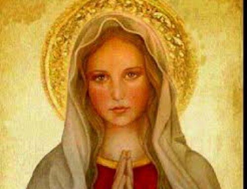 La Inmaculada Concepción: ¿Qué es?¿Por qué?